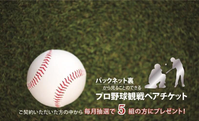 ジャイアンツ戦野球観戦チケット ご契約いただいた方から毎月抽選で3組の方にプレゼント!